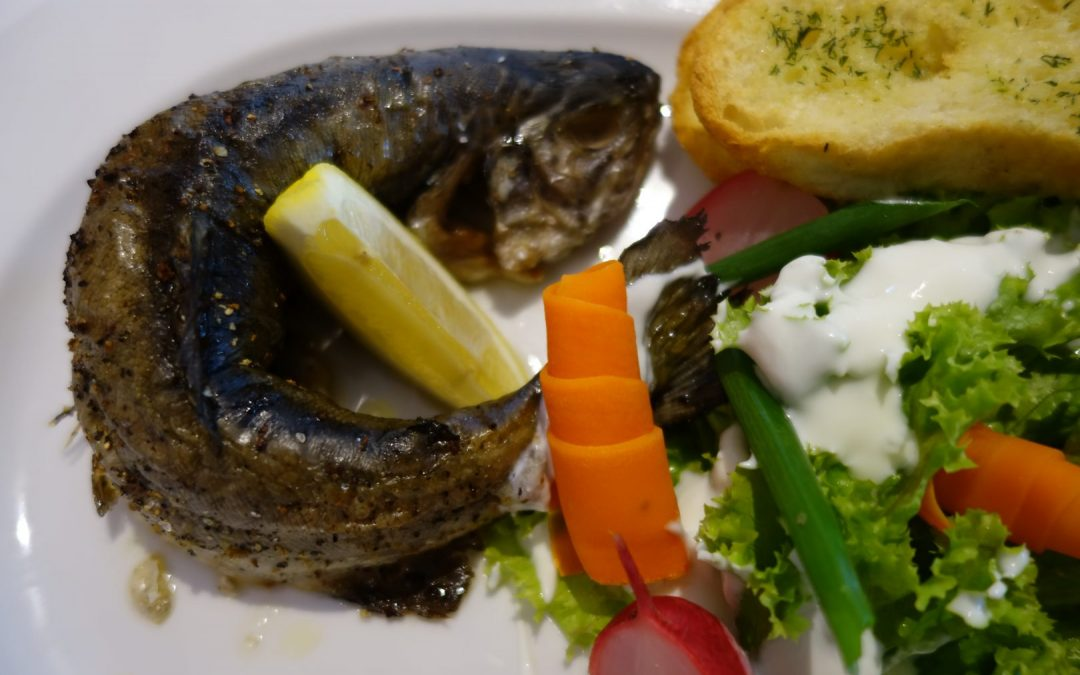Konkurs kulinarny – mazurska ryba z grilla